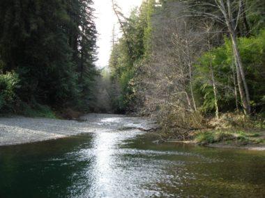 Russian River outside Sonoma County