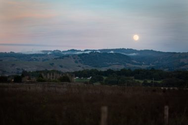 Grassy Sonoma County hills at the twilight hour